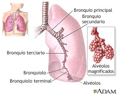 Signos de insuficiencia respiratoria aguda